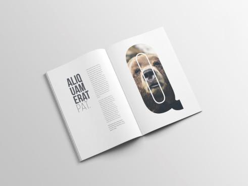 mockups revistas enfoquegaussiano
